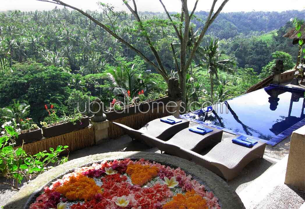 Property VLH07 - Ubud Bali's Premier Resource for Land and Villas