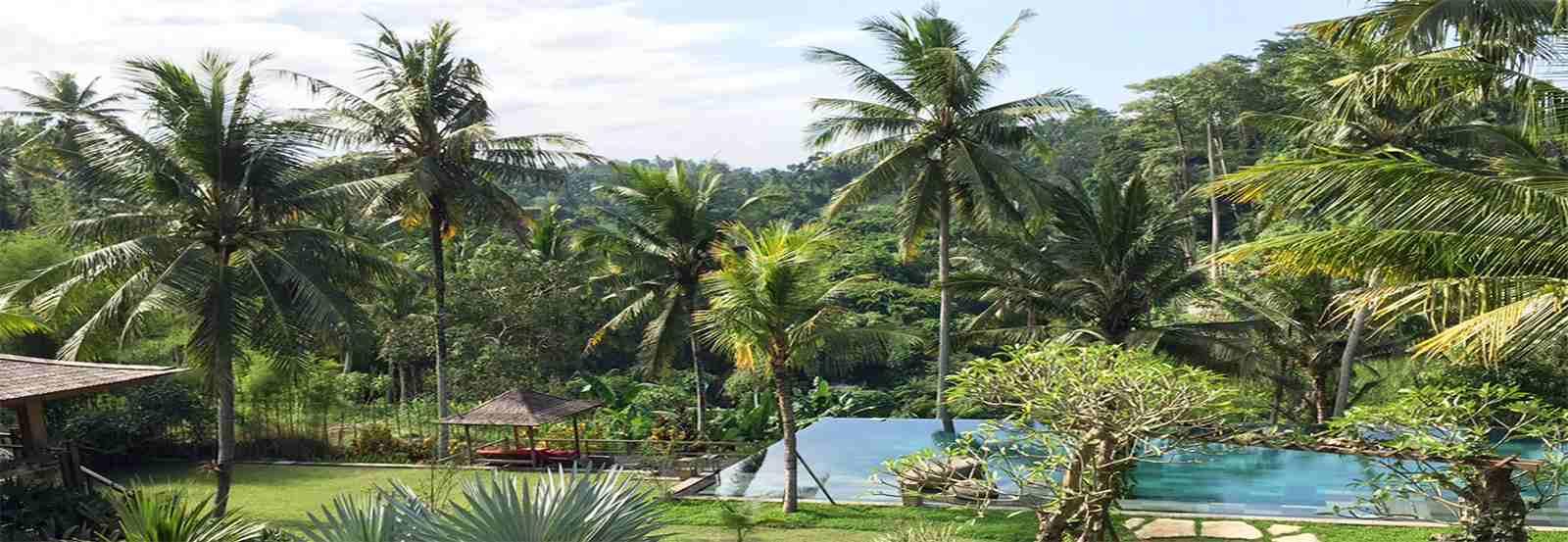 Ubud Homes Background Header Penari 3